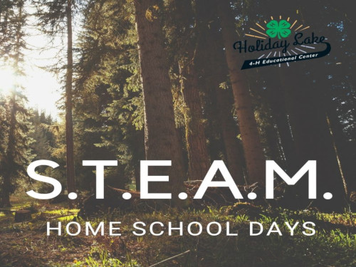 STEAM Home School Days