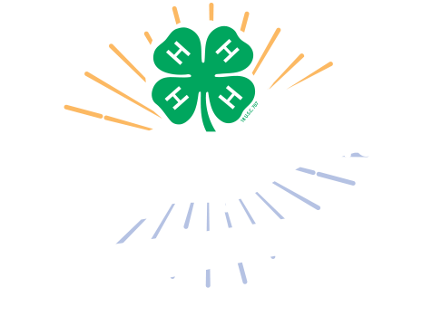 largecenter 4h camp logo